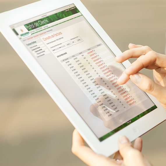 factura online de mercadona mercadona